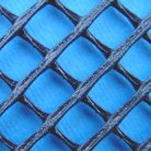 Extruded Mesh